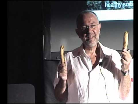 TEDxMarrakesh - Ralph Wilms - Microbes: Invisible Invaders Amazing Allies
