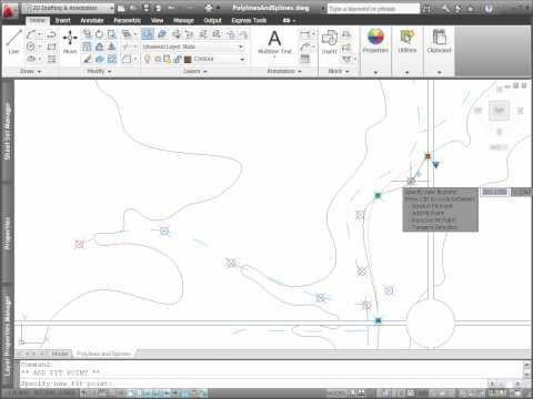 AutoCAD 2011 Polyline and Spline Editing