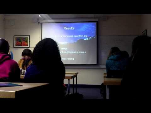 Jay Adams - Dissertation Presentation