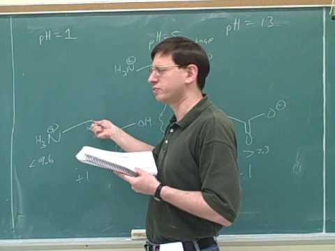 Organic chemistry: Amino acids and peptides (3)