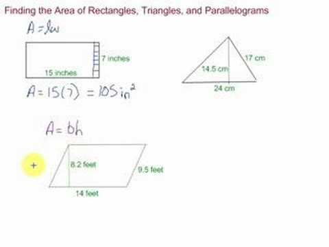 Area of Rectangles, Triangles and Parallelograms