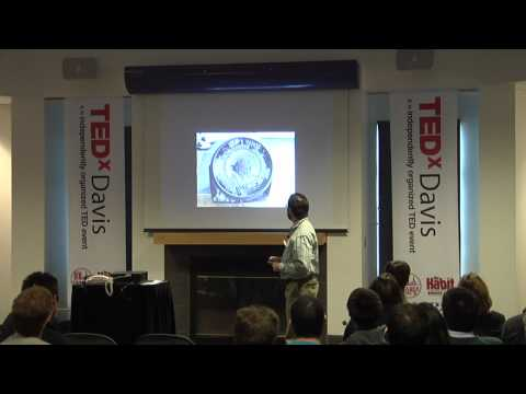 TEDxDavis-Andy Jones-Loki in the Nursery: An Unlikely Path to Tranquility