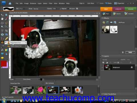 Photoshop Elements Tutorial The Clone Stamp Tool Adobe Training Lesson 13.12