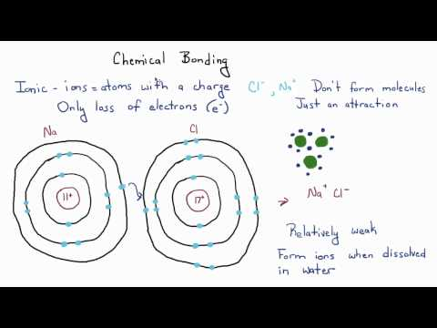 Introduction to Biology - 4 - Some More on Chemistry