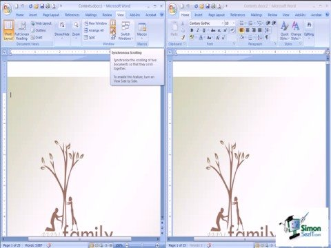 Using the Side by Side View in Windows 2007