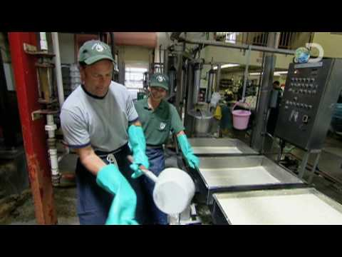 Dirty Jobs - Tofu Maker - Three Hand Job