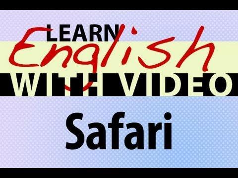 Learn English  with Video - Safari