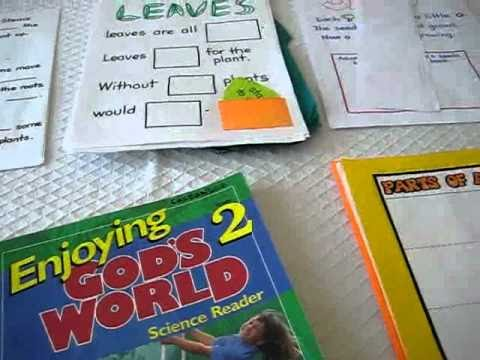 Grade 1 - Science. Plants study with books and activity projects. Introduction