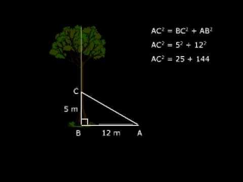 How to Study CBSE X Maths Tutorials Online NCERT Solutions