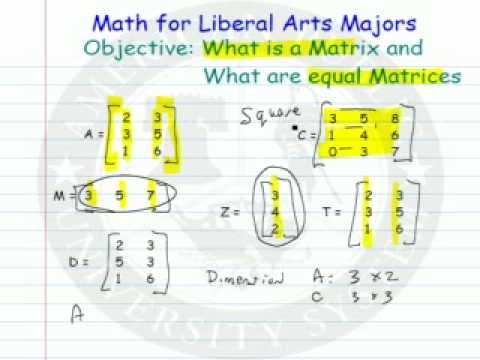 Matrix - What is it and What are Equal Matrices.mp4