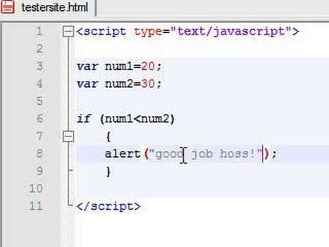 Javascript Tutorial - 8 - If Statement