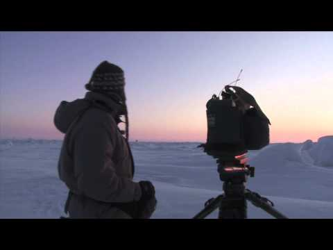 NATURE | Bears of the Last Frontier | Video Diary: A Frozen Desert | PBS
