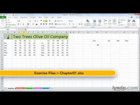 Excel: Simultaneous data entry in nonadjacent cells | lynda.com tutorial