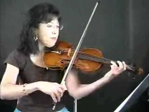 Violin Song Lesson - How To Play In The Hall Of The Mountain King