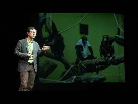 TEDxSeoul - SanHa Kim - Gibbons, long-armed apes