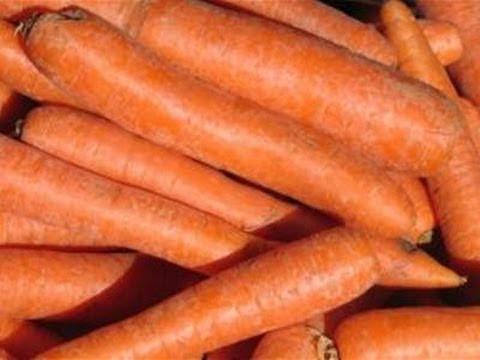 How To Grow Carrots In Your Garden