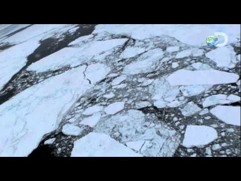 Beyond Survival with Les Stroud - The Arctic | Sneak Peek