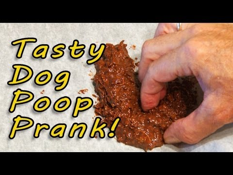 Tasty Dog Poop Prank!