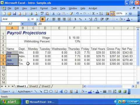 Excel 2003 Tutorial Copying All Formatting from Cells to Another Microsoft Training Lesson 7.9
