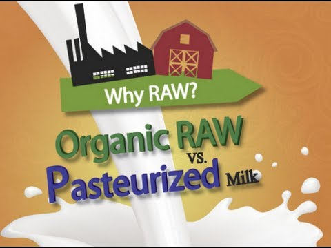 raw milk vs pasteurized milk nutrition