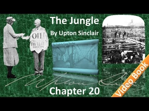 Chapter 20 - The Jungle by Upton Sinclair