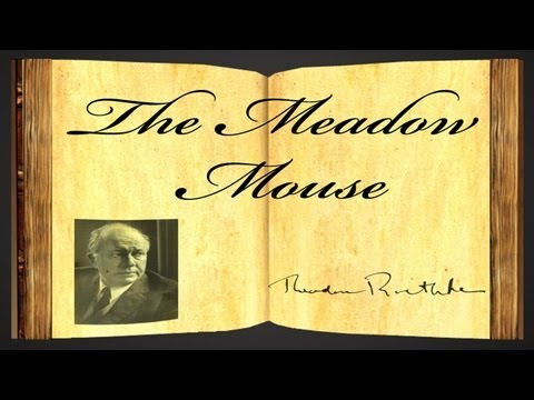 Pearls Of Wisdom - The Meadow Mouse by Theodore Roethke -- Poetry Reading