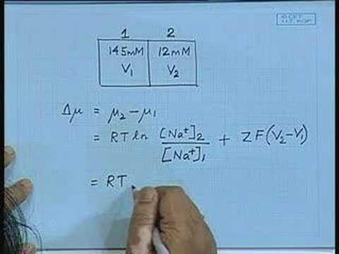 Lecture - 15 Membrane Transport
