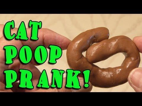 Cat Poop Prank!
