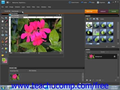 Photoshop Elements 9.0 Tutorial Selecting Colors with the Eyedropper Tool Adobe Training Lesson 5.6