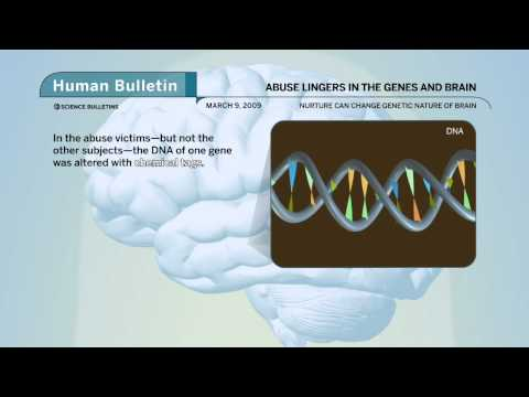 Science Bulletins: Abuse Lingers in the Genes and Brain