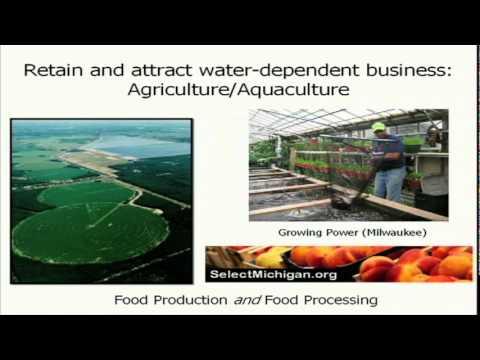 TEDxMuskegon - Alan Steinman - Blue Water Economy