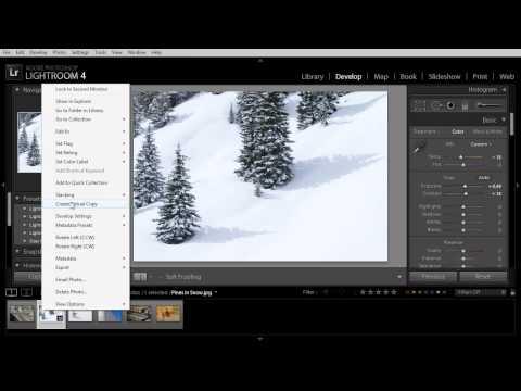 Creating Virtual Copies