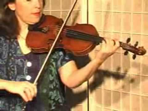 Violin Lesson - How To Play Danman's Print Library # 112