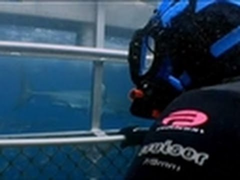 The Shark Cage | An Idiot Abroad
