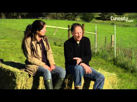 Nicolette and Bill Niman: Farming and Sustainable Ranching