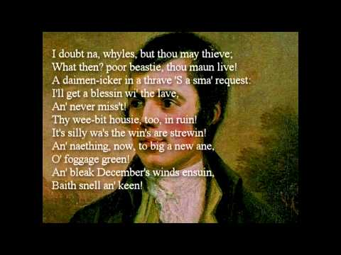 To A Mouse by Robert Burns ~ poem reading with text