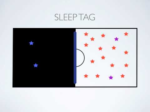 P.E. Games - Sleep Tag