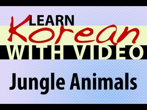 Learn Korean with Video - Jungle Animals