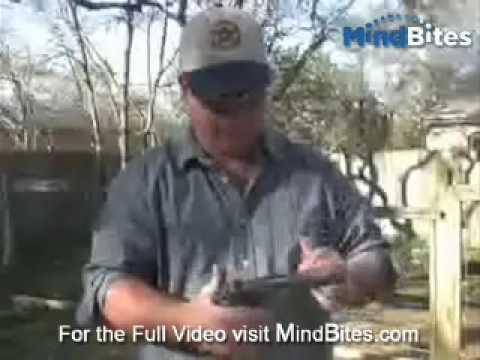 Mindbites: How to Take Apart a Pistol