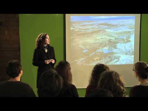 TEDxGeorgiaStrait -- Tzeporah Berman -- The New Energy Revolution