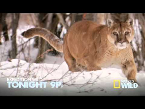 Expedition Wild Tonight at 9p et/pt