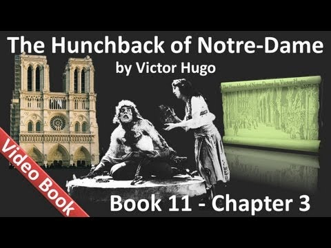 Book 11 - Chapter 3 - The Hunchback of Notre Dame by Victor Hugo