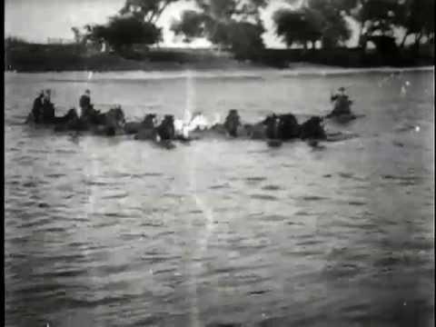 Herding horses across a river