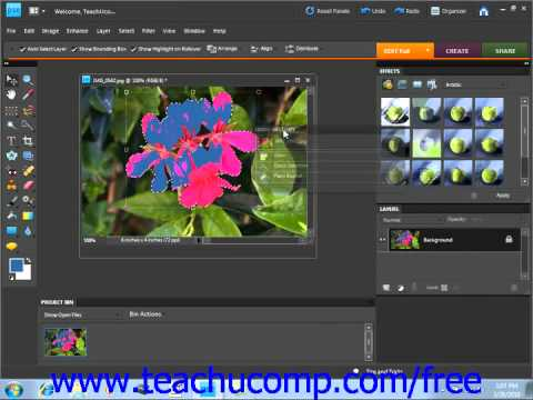 Photoshop Elements 9.0 Tutorial The Undo Command & Undo History Panel Adobe Training Lesson 3.5