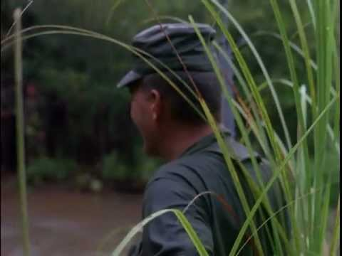 Special Forces Combat Patrol (1964)