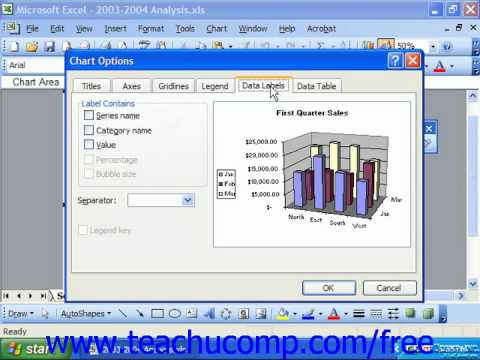 Excel 2003 Tutorial Adding Data Labels Microsoft Training Lesson 22.5