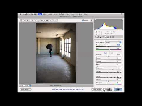 Photoshop: Opening images in Camera Raw | lynda.com