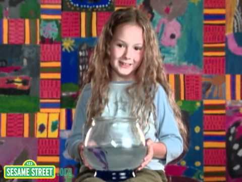 Sesame Street: Kids Talk About Pets