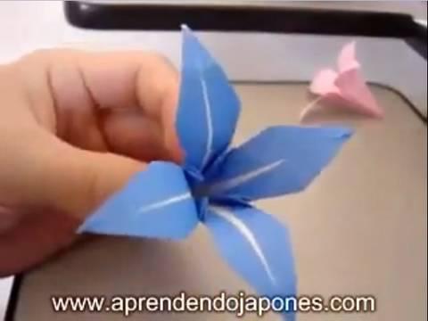 Origami Flower - Flor de Origami