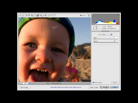 Photoshop: Using the Spot Removal tool | lynda.com